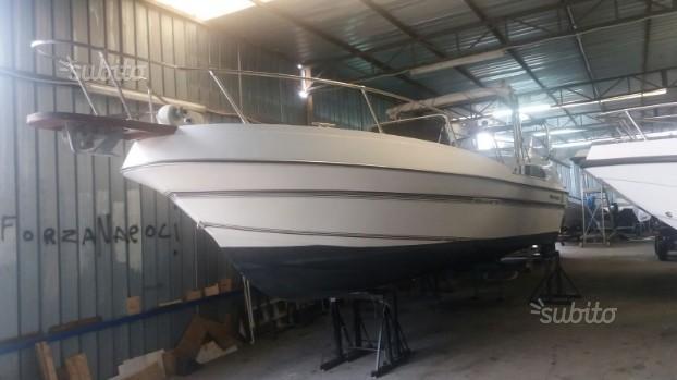 Barca Renken