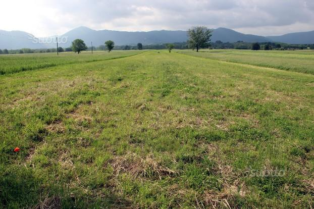 Lotto di terreno agricolo