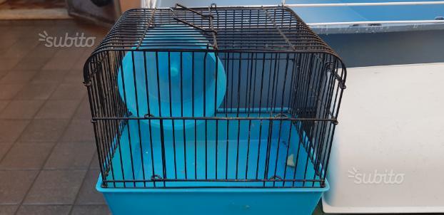 Set gabbie roditori e uccelli