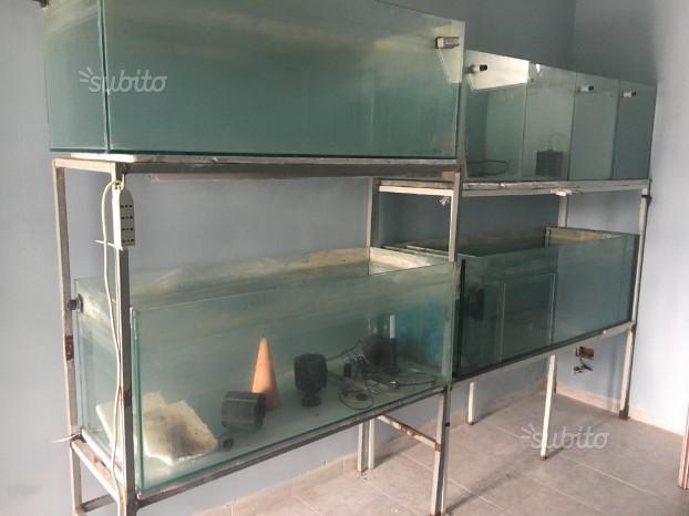 Batteria per acquario dolce