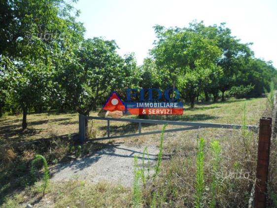 Terreno agricolo di 2750 mq