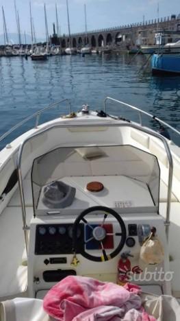 Barca con motore Volvo linea d'asse