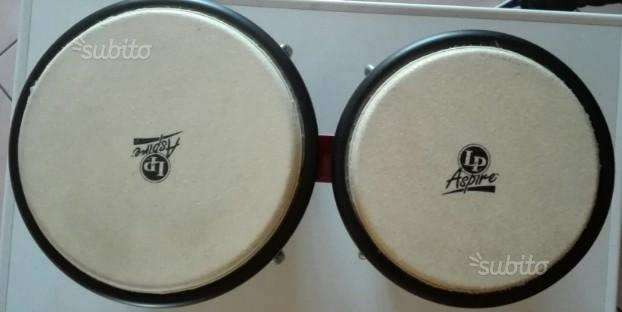 Latin percussion bongos aspire