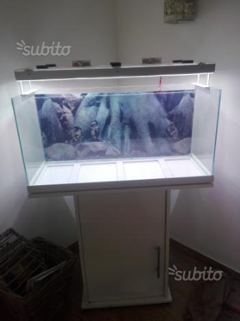 Plafoniera led acquario