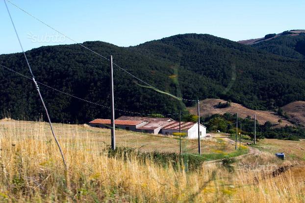 33 ettari terreno + fabbricato