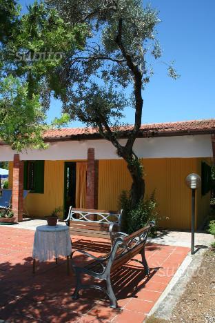 Castellabate - Cilento - mare a 50 Metri VERI