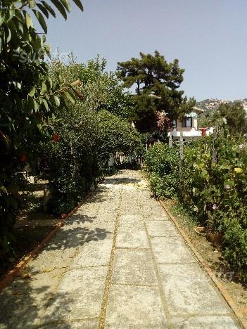 Villa Porzio Marina di Ascea (SA) dal 3/09 in poi