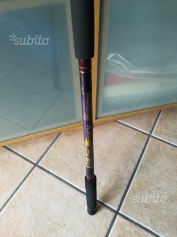 Canna da pesca Italcanna black fury 3.70