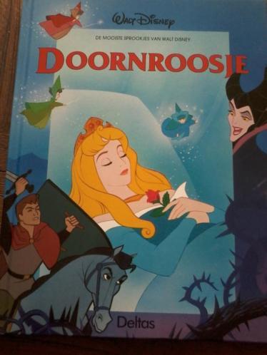 Boek Doornroosje Disney Nieuw ( Jola )