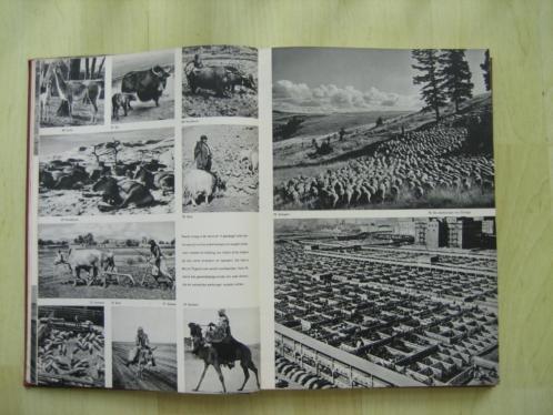 De wereld in woord, kaart en 167 foto,s in koperdiepdruk