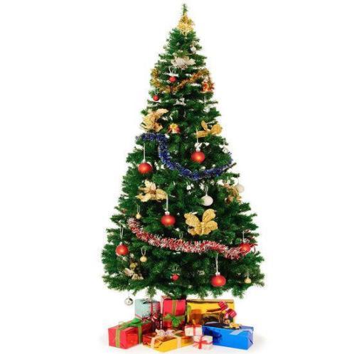 Kerstboom inclusief voet, 240 cm hoog
