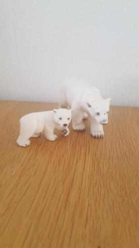 gezocht ijsberen voor mijn bos