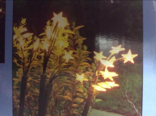 Tuin feest verlichting kerst 5 pennen met elk 6 sterlampen