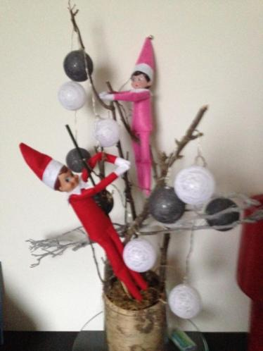 Elf on the shelf , rendier