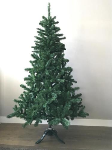 Mooie volle Triumph kerstboom 200 cm .Brandvertragend . Zgan
