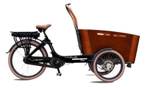 TOP Elektrische Vogue Carry bakfiets middenmotor bakfietsen