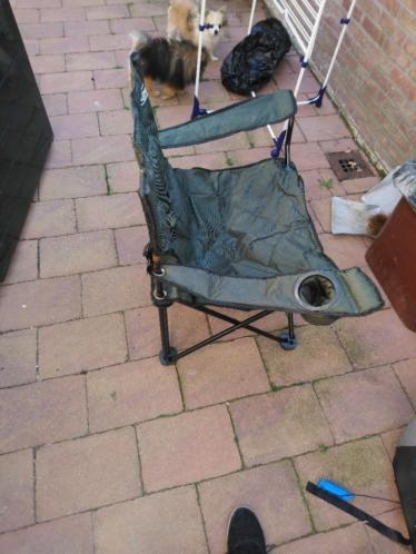 Vis stoel